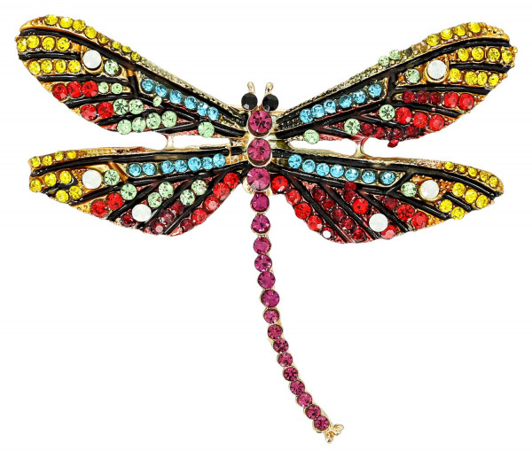 Broche - Rainbow Dragon Fly