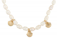 Collier - Freshwater Shell